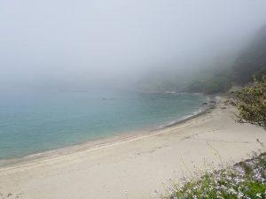 霧のしりくさり