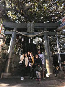 奈良尾神社あこう樹パワスポ